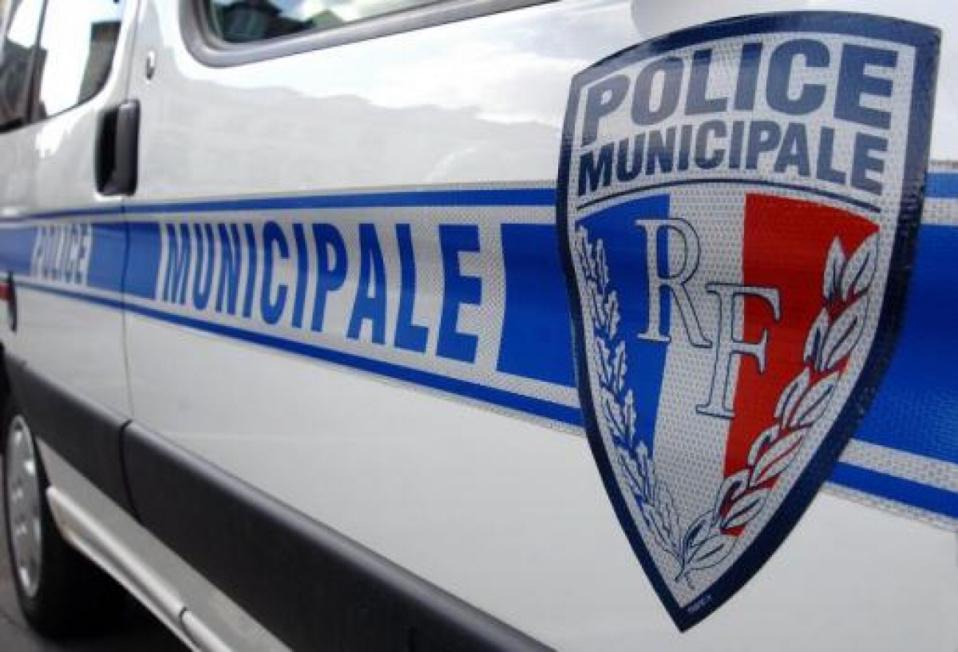 Interventions de la police municipale du Val d'Hazey : semaine 12
